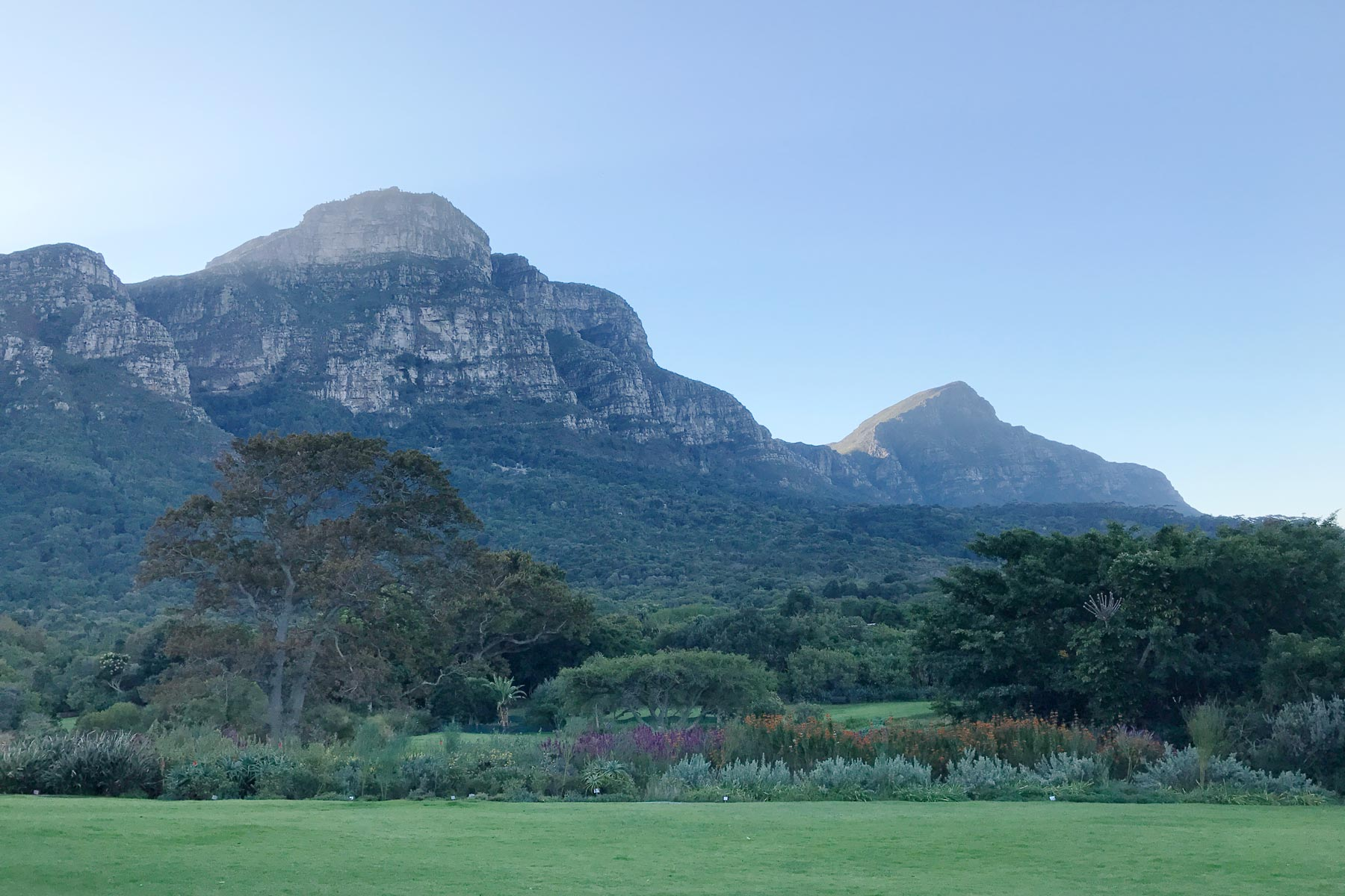 Kirstenbosch Botanical Gardens in South Africa