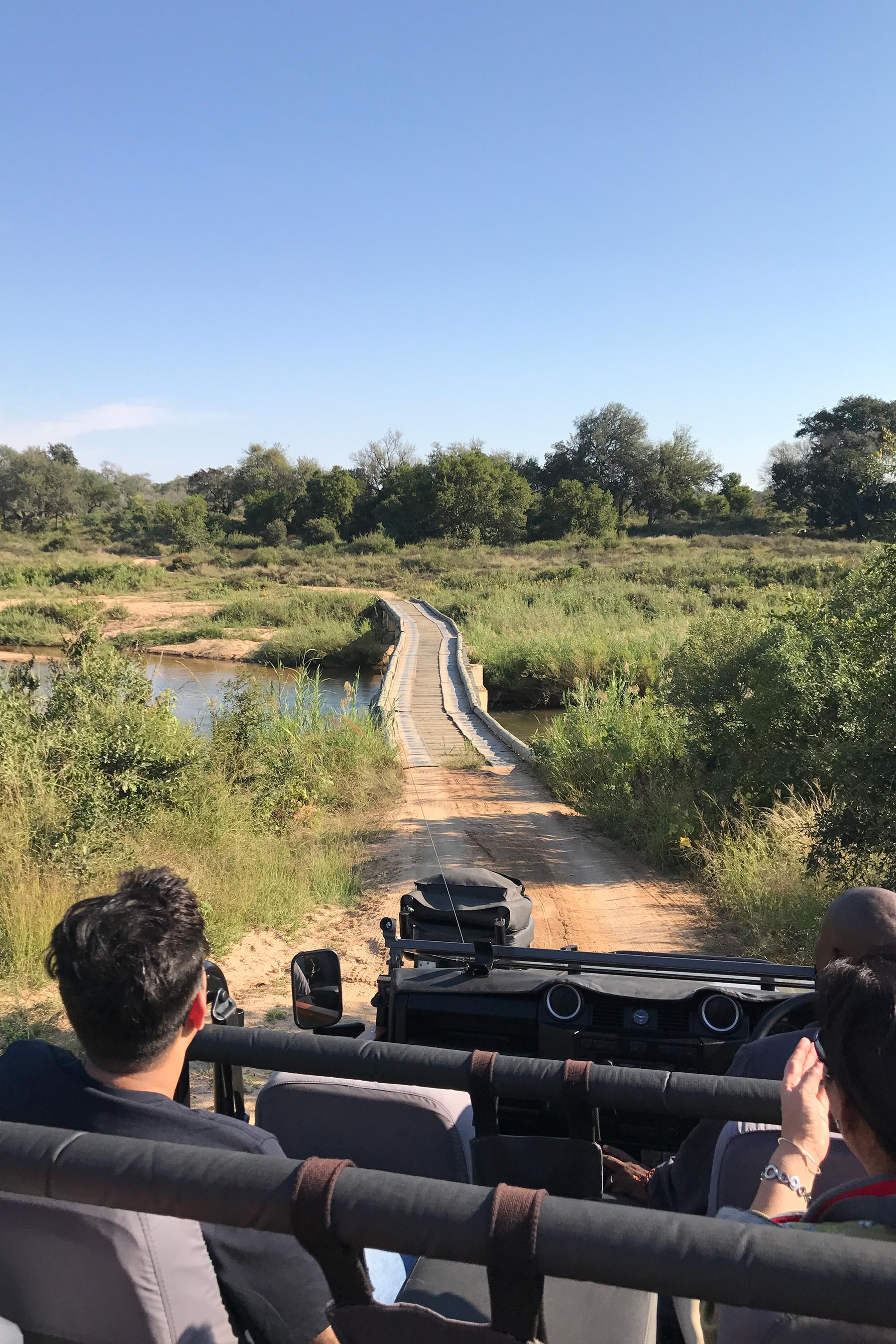 The 2 days that we spent in Kruger National Park as a part of our 10 days in South Africa were seriously the best! #travel #southafrica #krugernationalpark #safari #big5